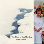 The Place of Our Meeting. Donna Emerson
