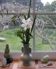 Joanne Kryger's kitchen window