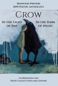 CROW: In the Light of Day, In the Dark of Night